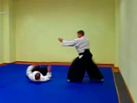 Aikido techniques videogallery
