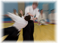 Aikido trainings