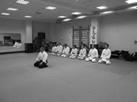 Aikido seminar by V. Goleshev in Moscow, November 27