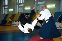 The aikido seminar by Sergei Rychkov in Vitsebsk