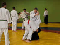 A session on Aiki-Jutsu Mumonkan by Vitaliy Goleshev